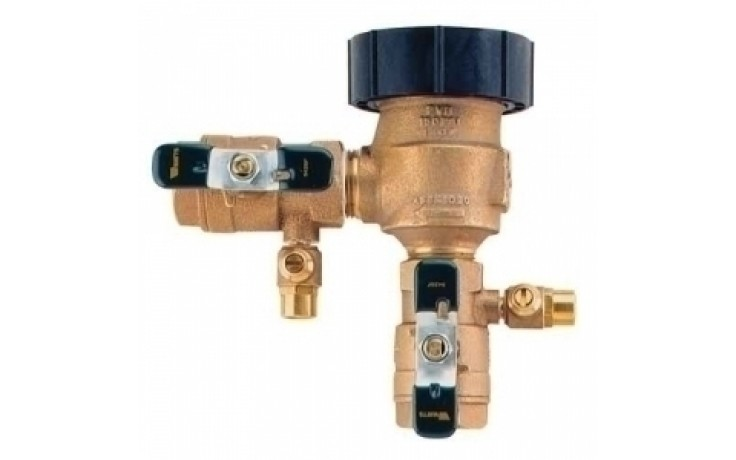 "Watts 800M4FR 1-1/2"" Vacuum Breaker with Freeze Protection"